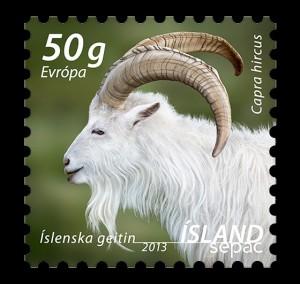 SEPAC - The Icelandic Settlement Goat