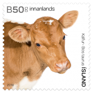 Stamp 662A Bos Taurus - The calf