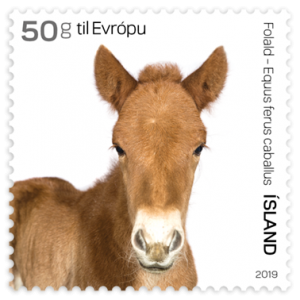 680B - The foal 50g to Europe